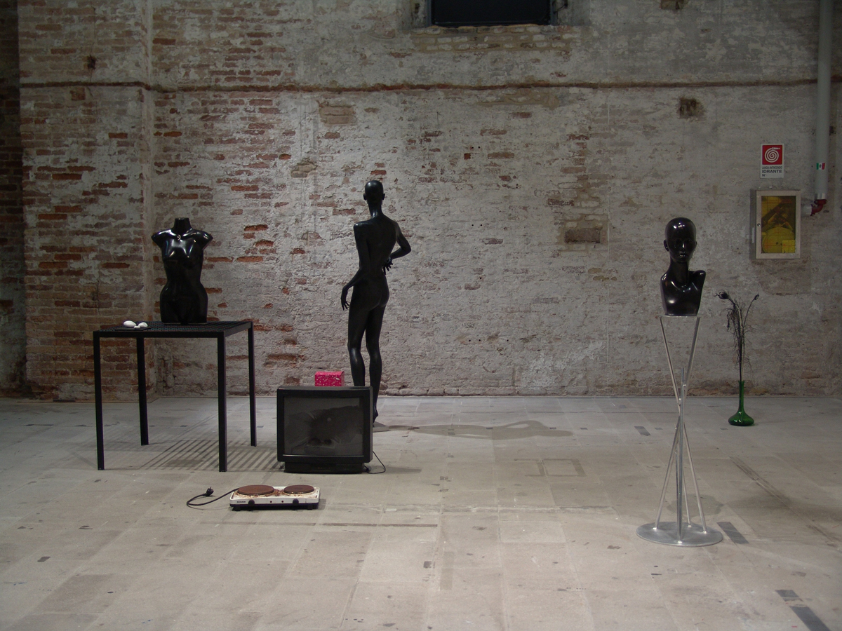 Europa 3000, 2011, installation view at at 54th International Art Exhibition – la Biennale di Venezia