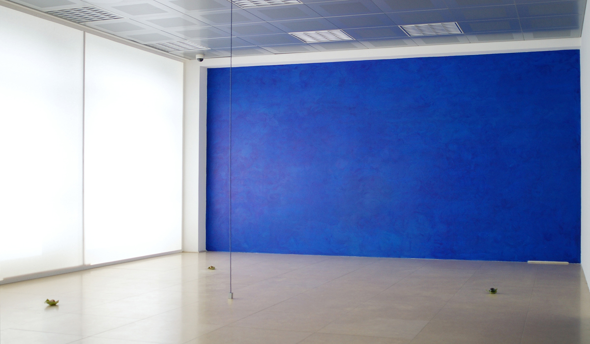 Untitled, 2011, installation view at Banca Akros, Milano photo Tartaruga