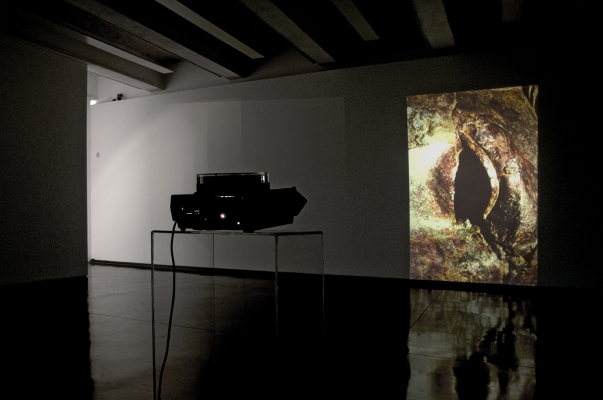 Dead Blink 2014, temporized slide projection, installation view at MACRO, Roma © Luis do Rosario