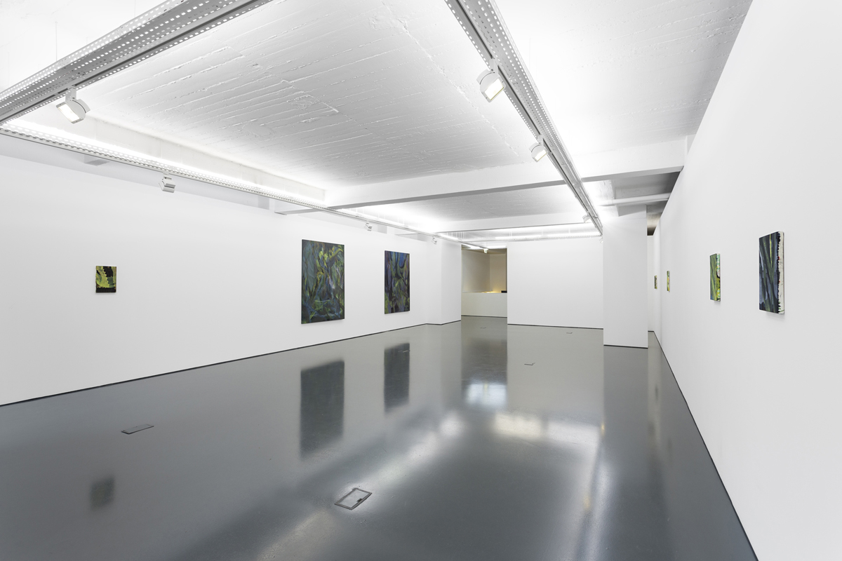 Z, 2013, exhibition view at Galeria Pedro Cera, Lisboa
