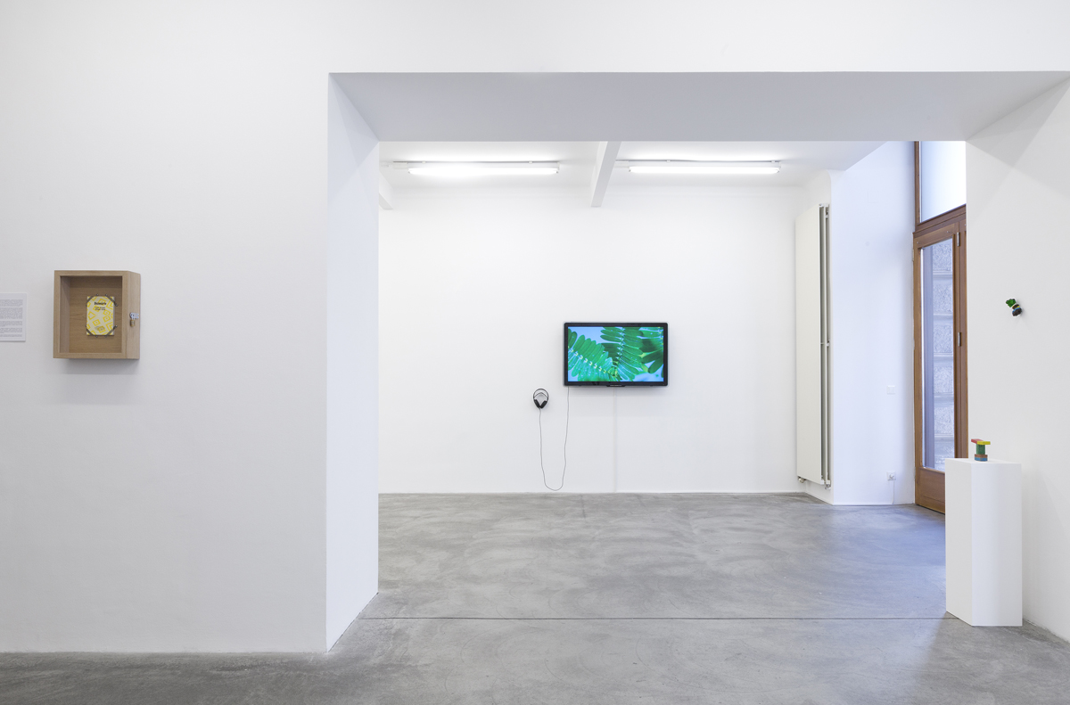 The winter of our discontent, 2016, exhibiton view at Galerie Martin Janda, Wien - photo Markus Wörgötter / The Pudic Relation Between Machine and Plant, 2016, 2 min. 30 sec., video loop, sound