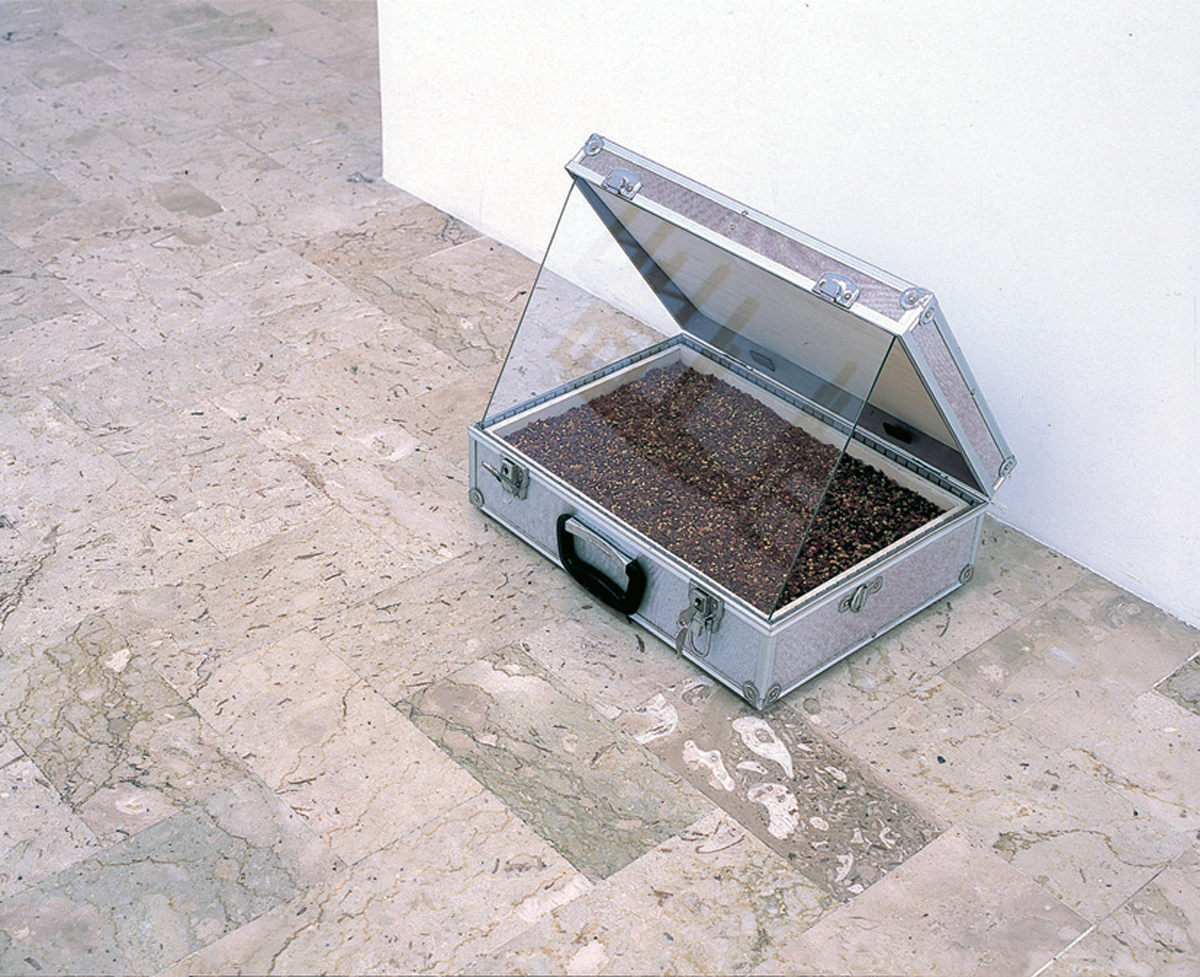 Casa del peperoncino, 2004, wood, bag, glass, red pepper, cm 38 x 46 x 41