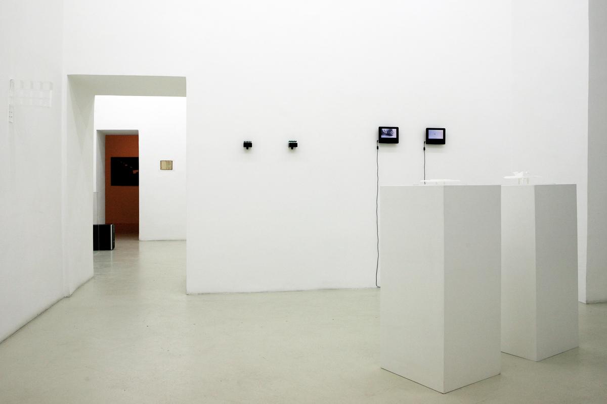 Yaima Carrazana, exhibition view