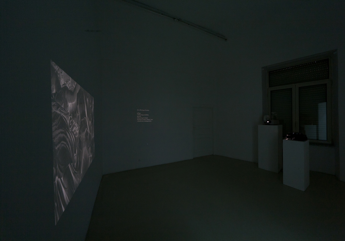 Barbarian Poems, 2011,  triple temporized projection