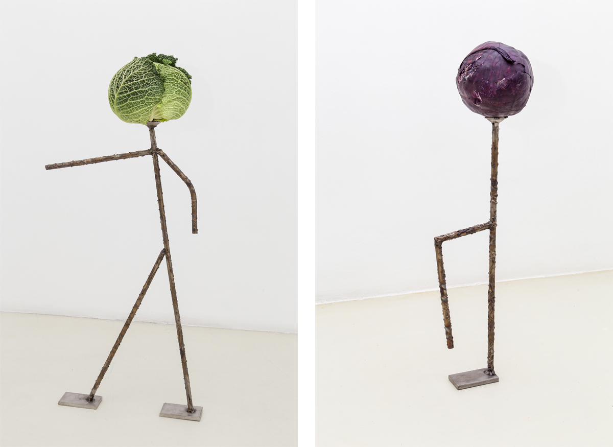 Capo (capurale), 2014, stainless steel worked, vegetable Cafone, 2014, stainless steel worked, vegetable