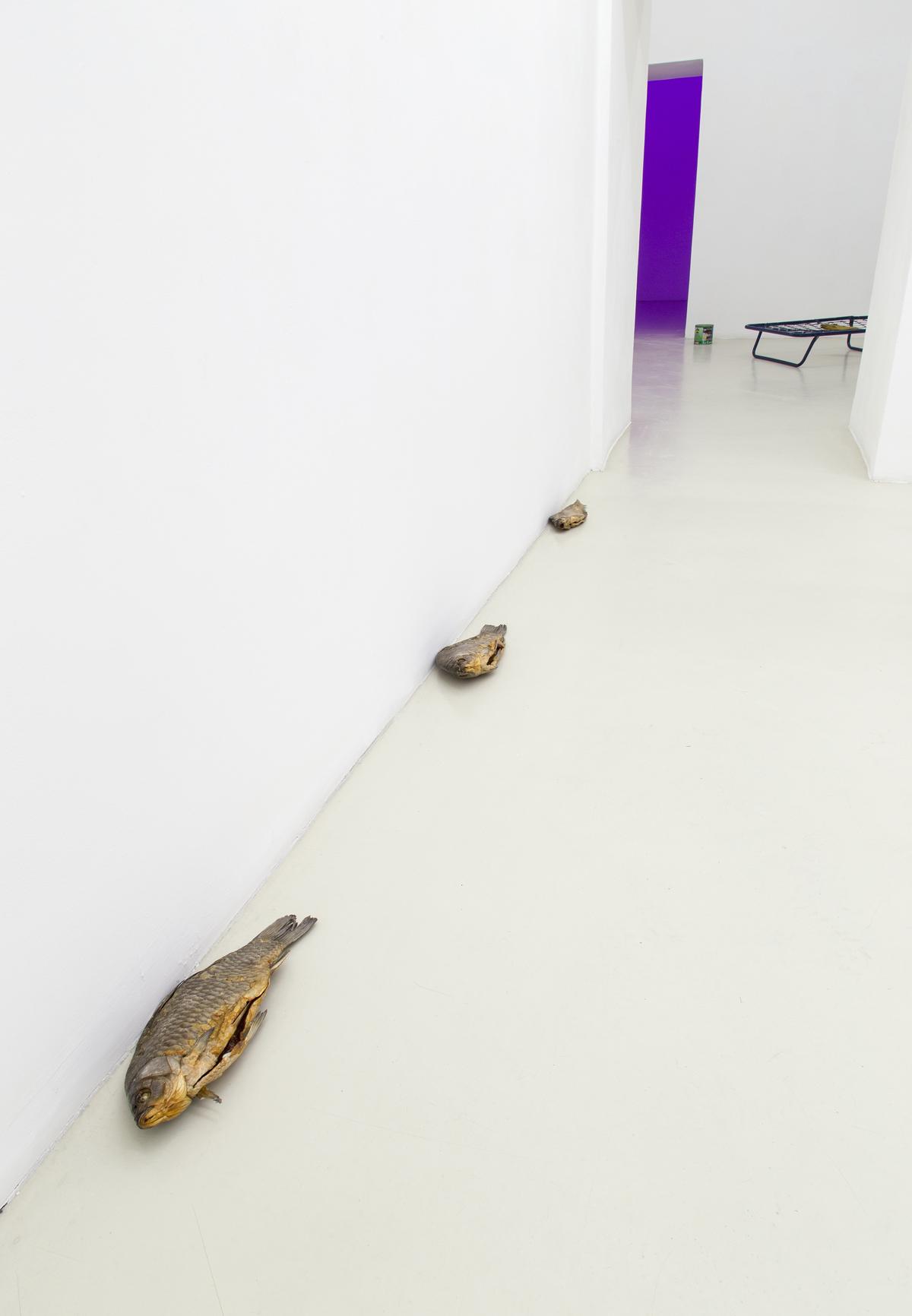pane pane pane vino canale di scolo, 2014, exhibition view