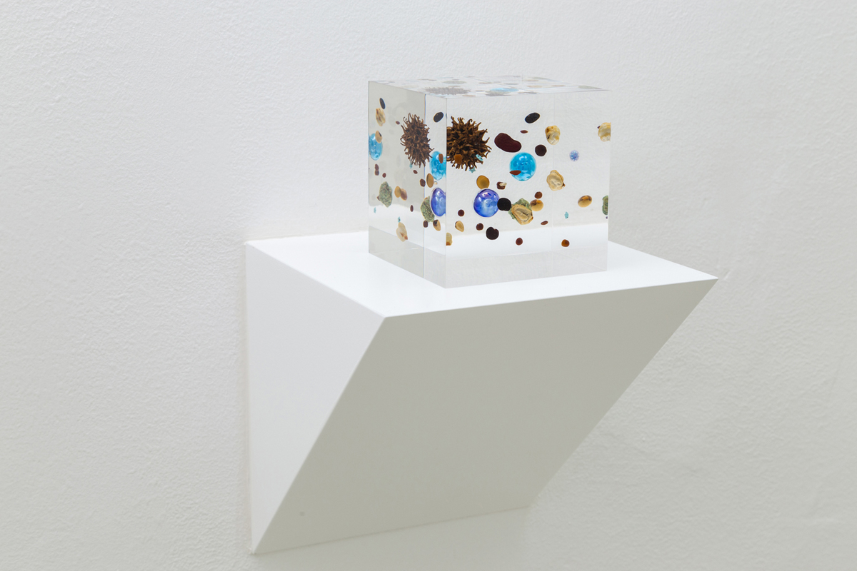Beans Cosmos, 2014, acrylic resin, legume, gold, map, marble, plastic, fruit of sweetgum, cm 10x10x10