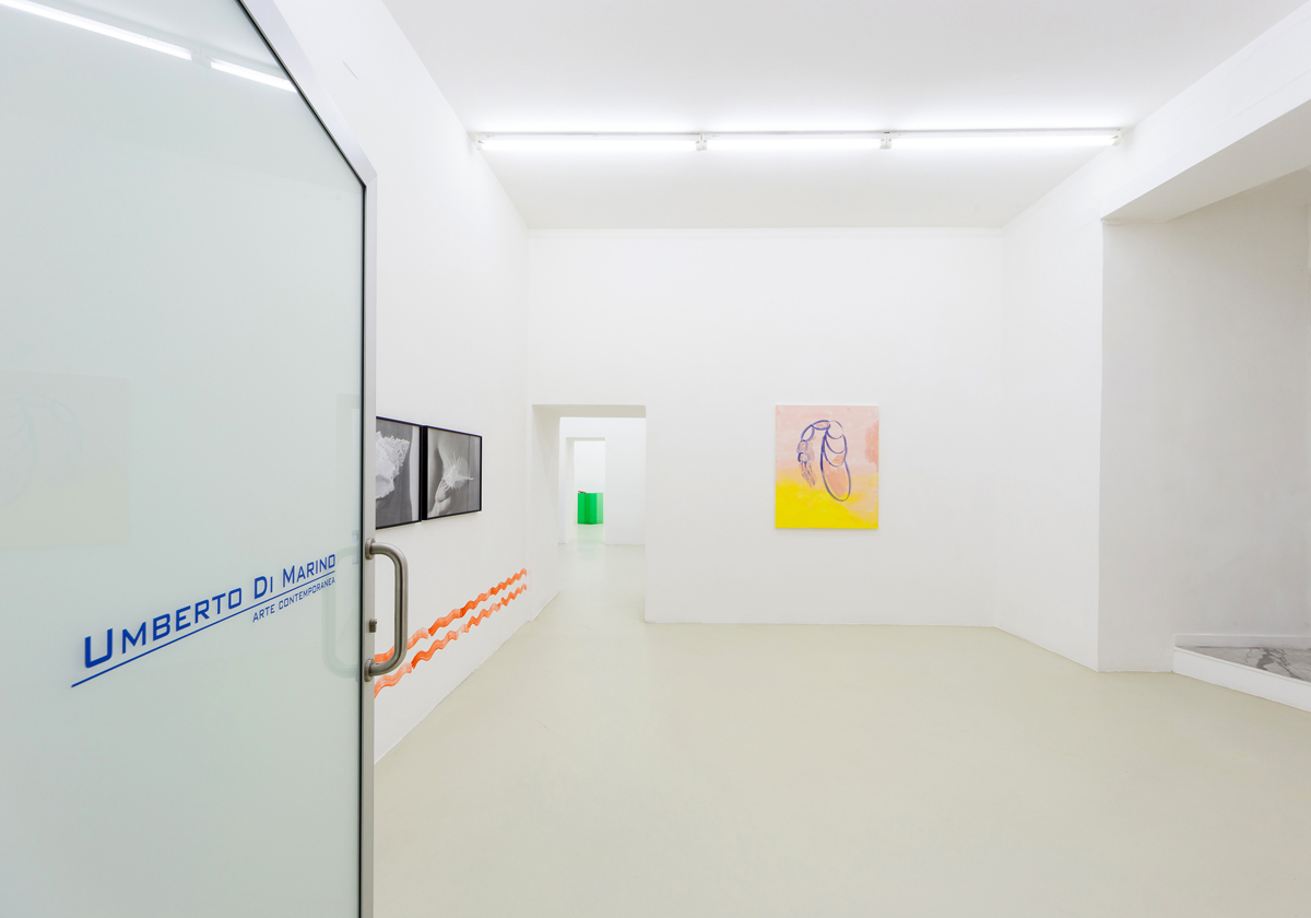 Sirena, 2015, exhibition view