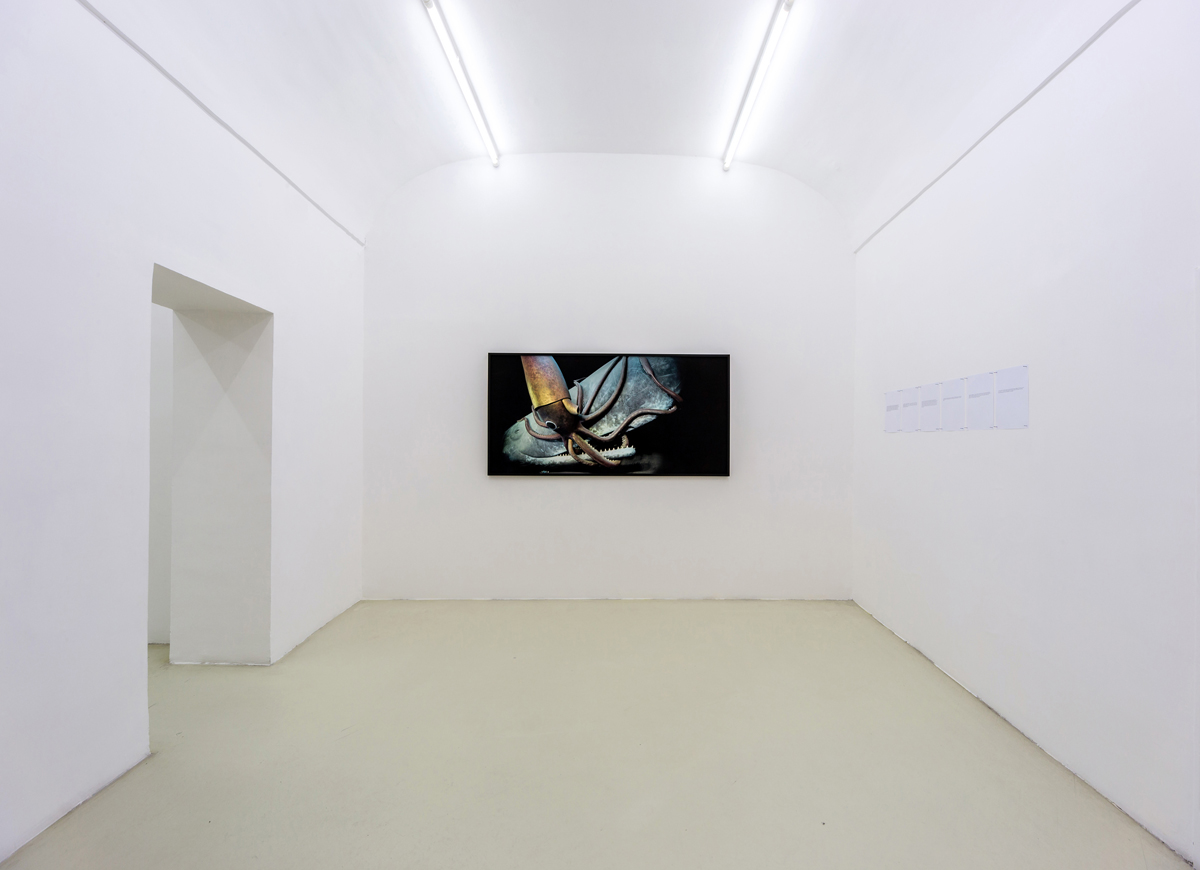 Cronache, 2015, exhibition view